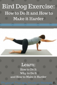 The Bird Dog Exercise: How to Do it and How to Make it Harder for Better Back and Core Strength