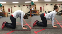 cat cow stretch for back spasms